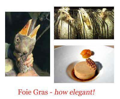 foie-gras-main-761600