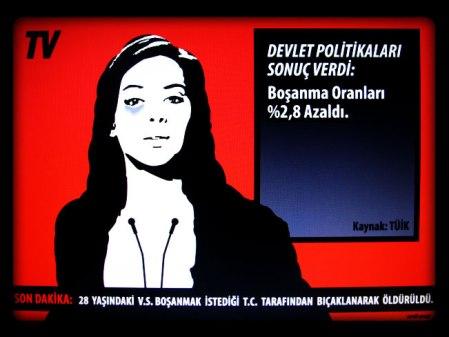 Bosanma_Oranlari_anti-pop_2013